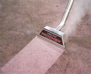 Environmentally Friendly Carpet Cleaning for Middlebury ,VT