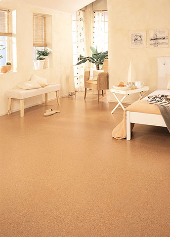Cork flooring - middlebury VT
