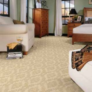 Carpet Gallery & Installation for Middlebury Vermont